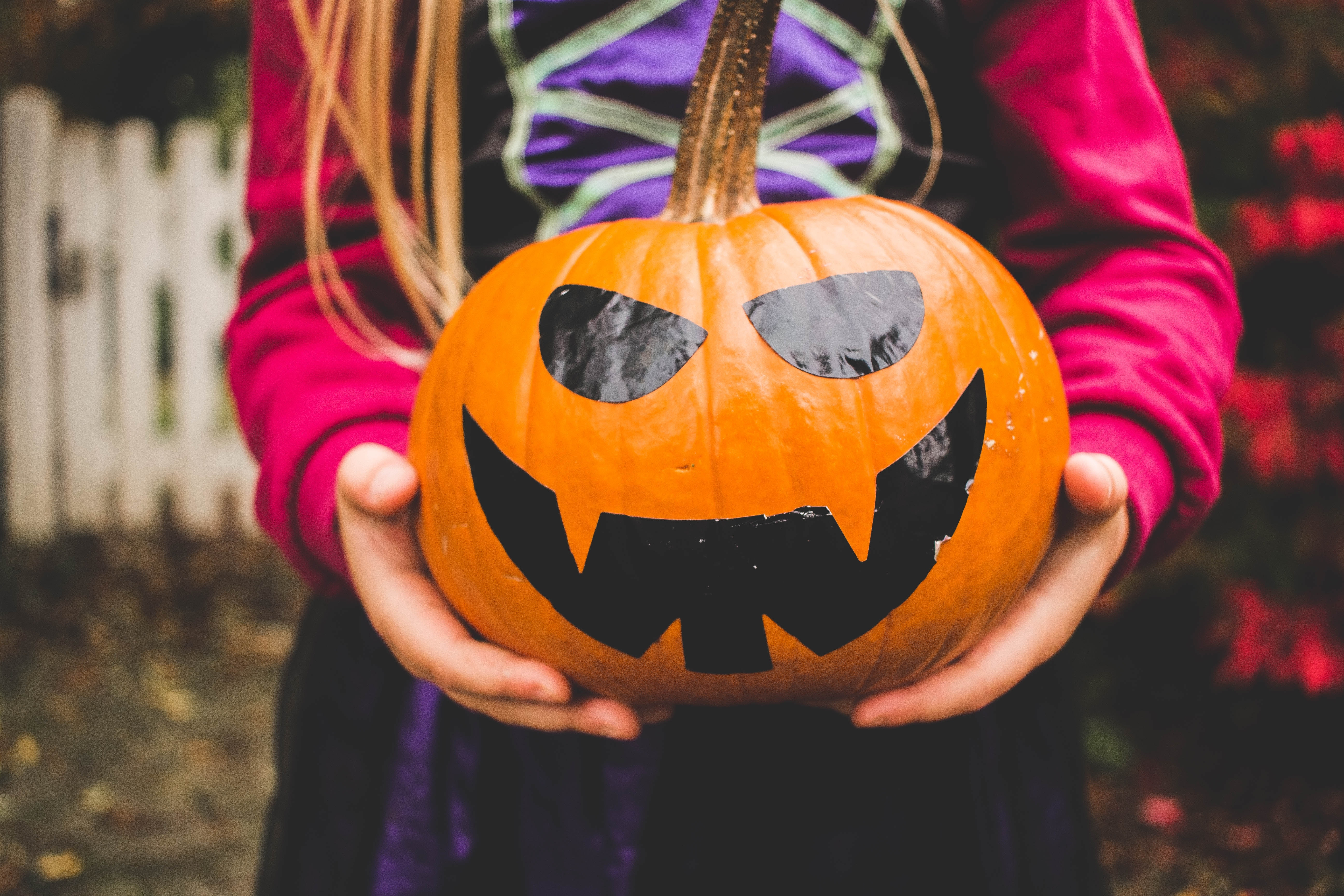 Navigating This Year's Halloween Harvest