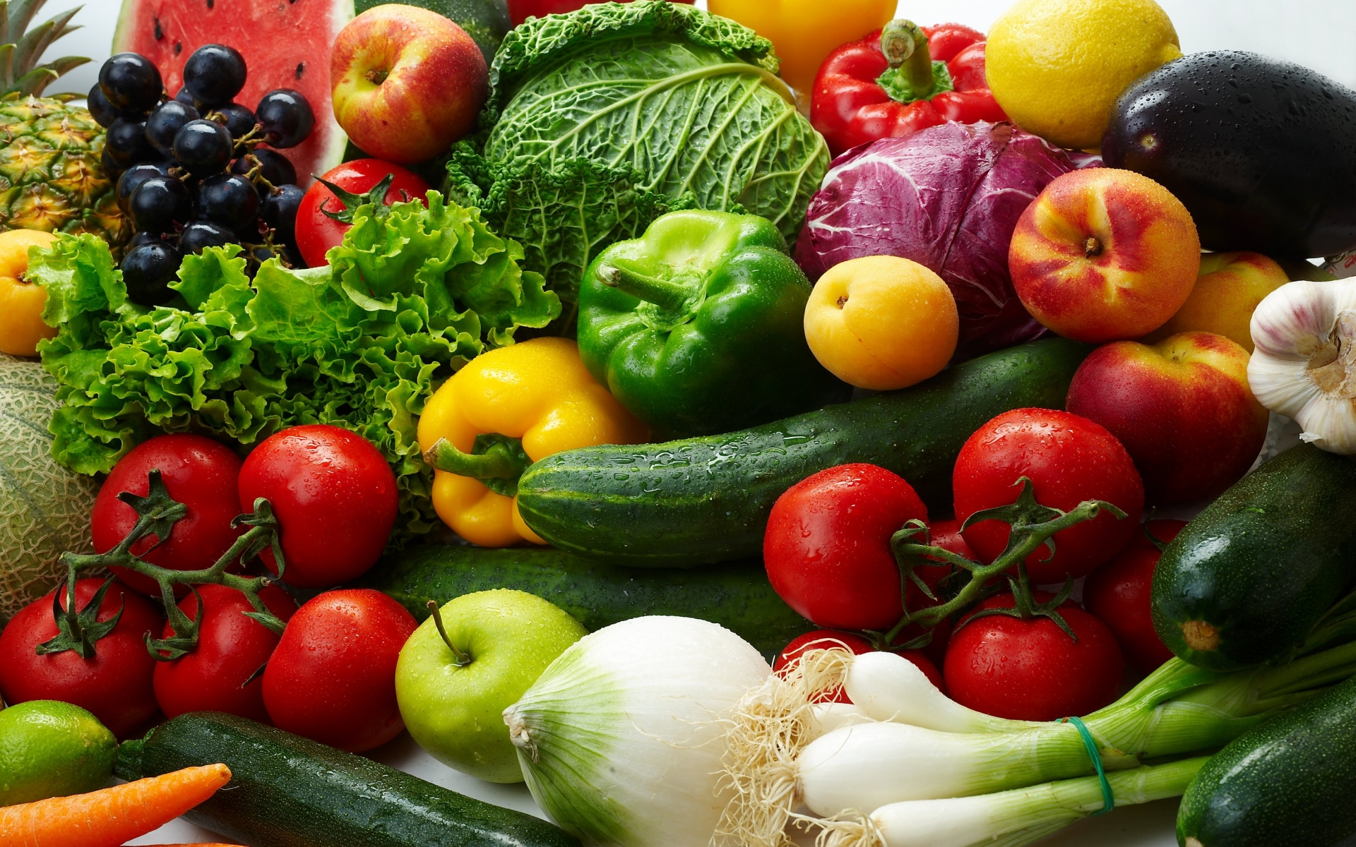 The SP Diet and Your Weight Loss Plan
