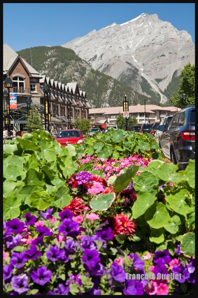 Photo d'une partie du centre-ville de Banff, Alberta, Canada 2014