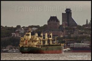 Le navire Shelduck (Monrovia) devant la Ville de Québec en 2016. La photo a été prise avec un Canon 5DSR