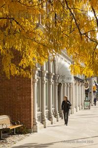 Rue d'Ottawa aux couleurs de l'automne en 2015