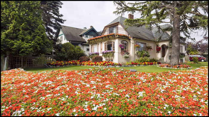 Traditional house with flowers in Victoria, British Columbia.