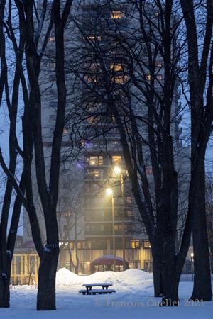 """""""L'heure bleue"""" dans un parc près du MNBAQ."""