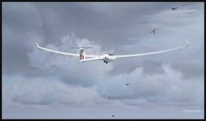 19527-Glider-and-birds-fsx