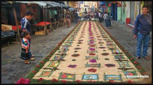 3899-Flower-carpet-in-San-Pedro-Guatemala-2014-web