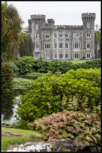 IMG_7363-Johnstown-Castle-Wexford-Ireland-2015-web