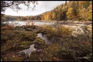 IMG_8717-Tewkesbury-Québec-2015-web