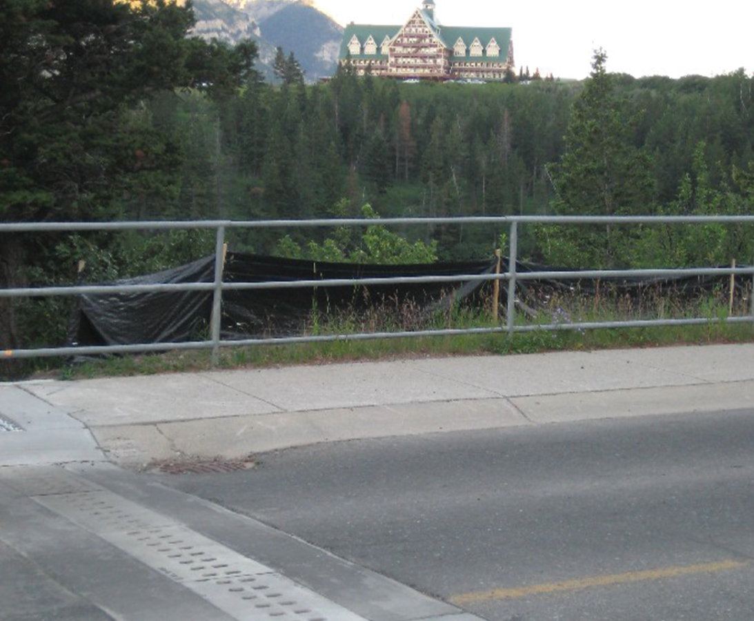 ACO Wildlife Tunnels, Waterton