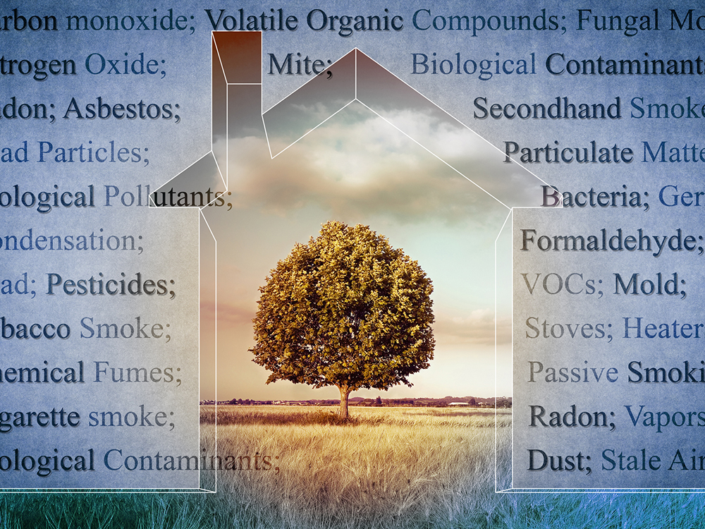 Microbial Air Quality for Home and Business