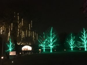 delaware-longwood-gardens-lights