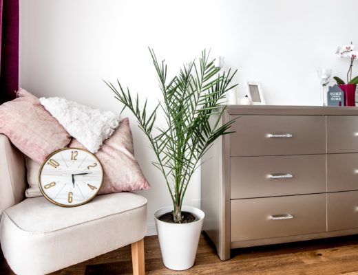 Dorm room ideas for college students. Tips for making your room feel like home, no matter how bland it looks at first. Take college life to the next level without spending a ton of money. Click to read!
