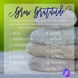 Building community in college through gratitude