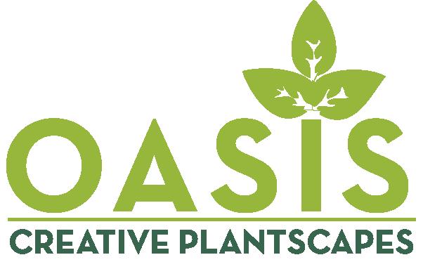 CreativePlantScapes