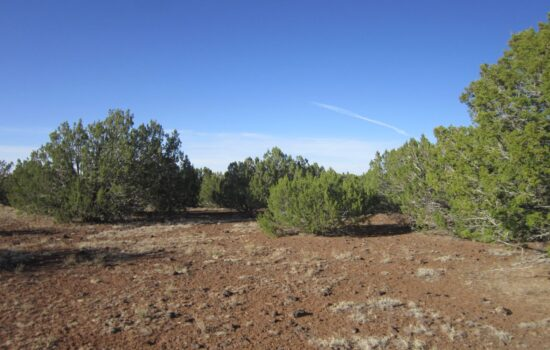 10 Acre lot on Roadrunner Rd in Showlow, Arizona! INVEST NOW!!- 404-53-015F