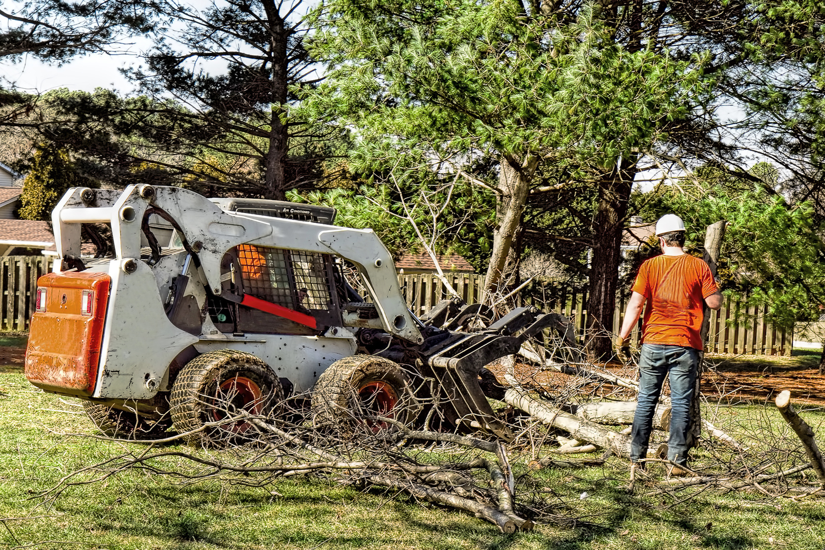 Allens Tree Service Gallery (6)