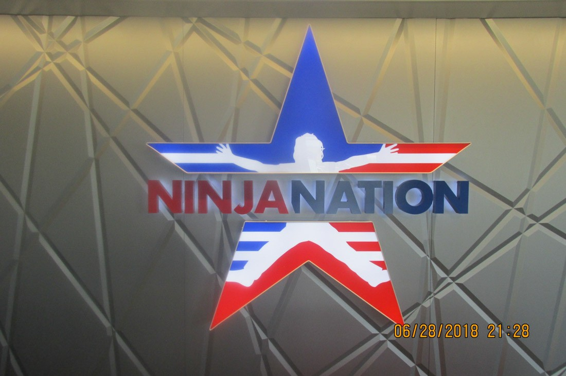 Ninja Nation graphic design