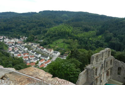 from castle looking down