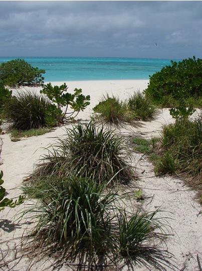 West Beach Sand Island