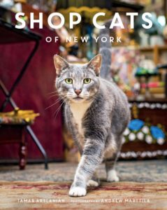 Place for Cats Amazon Smile Place for Cats Image