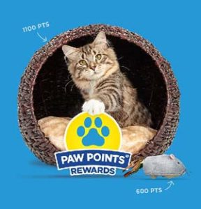 Paw Points Fundraiser Graphic