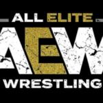Former WWE Superstar Debuts on All Elite Wrestling