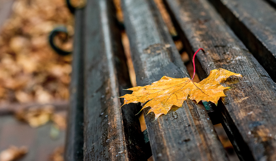 Fall maintenance checklist for multifamily apartment buildings