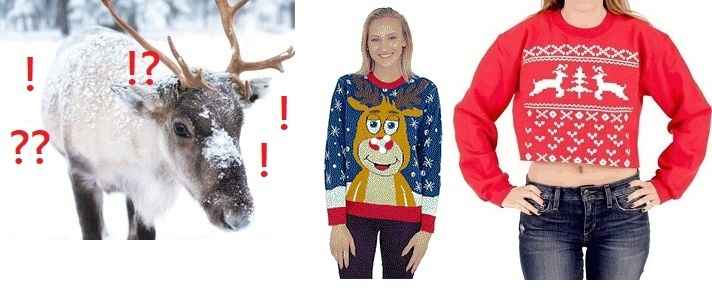 Best Ugly Christmas Sweater with Reindeer