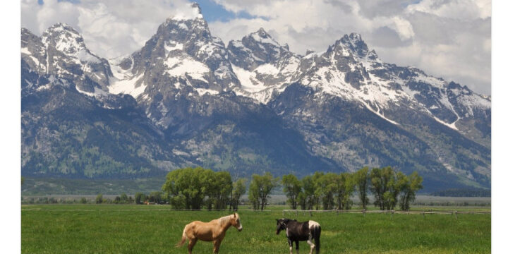 coindesk_wyoming