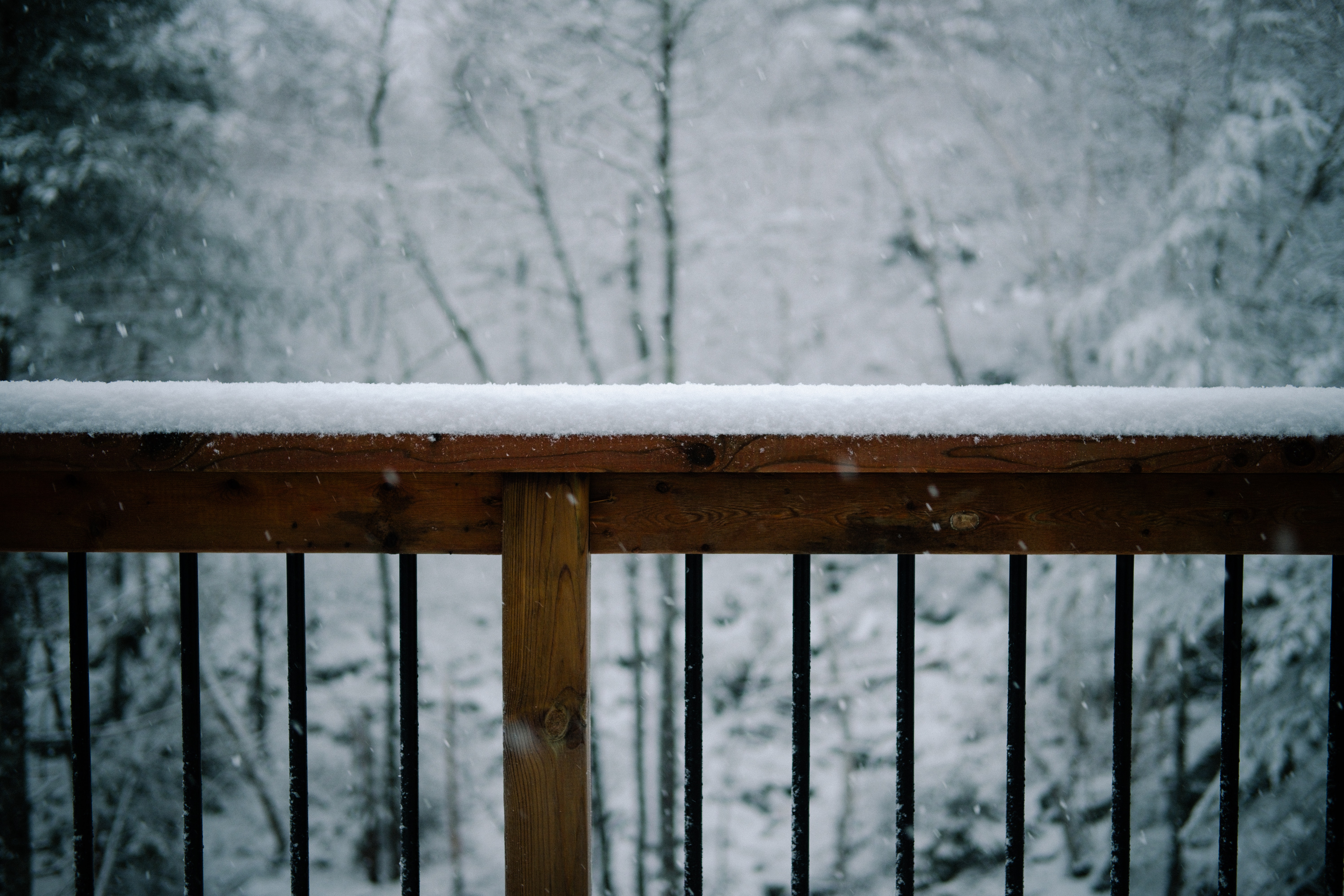 Winterizing Your Yard | Canmore
