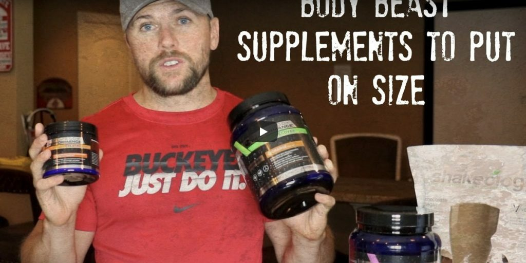 body best supplements to put on size