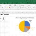 Homelessness Statistics.xlxs