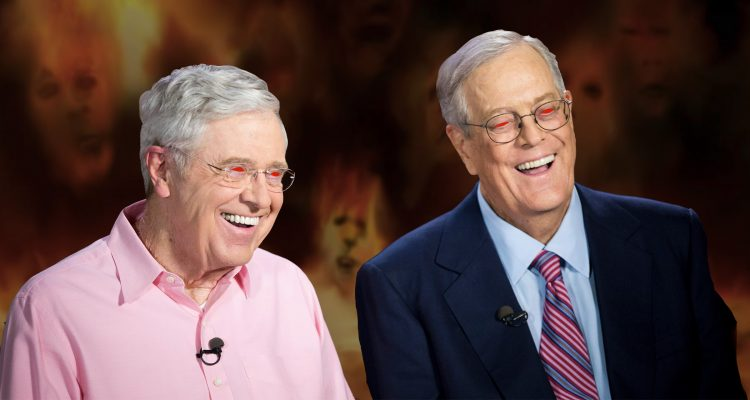 The Koch Network Emerges