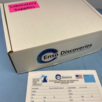 Outside of free lab specimen submission kit enso discoveries