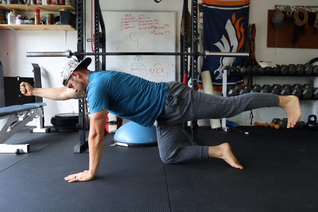 Bird dog for back and core strength
