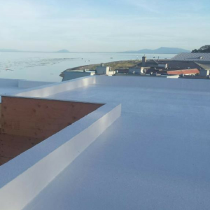direct to substrate - seamless roofing membrane vancouver - seamless roofing vancouver - roof waterproofing