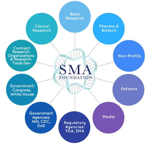 Hub of SMA Foundation Collaborators