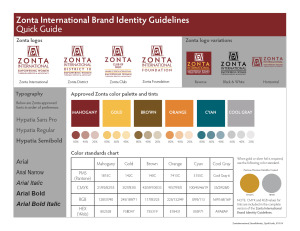 Brand Identity Quick Guidelines - Standard