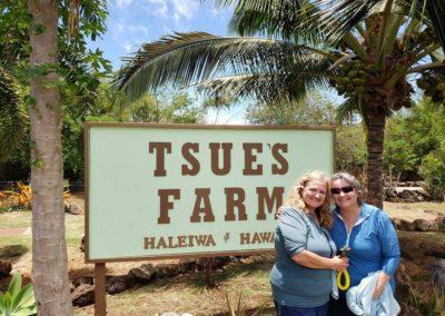 tsues-farm