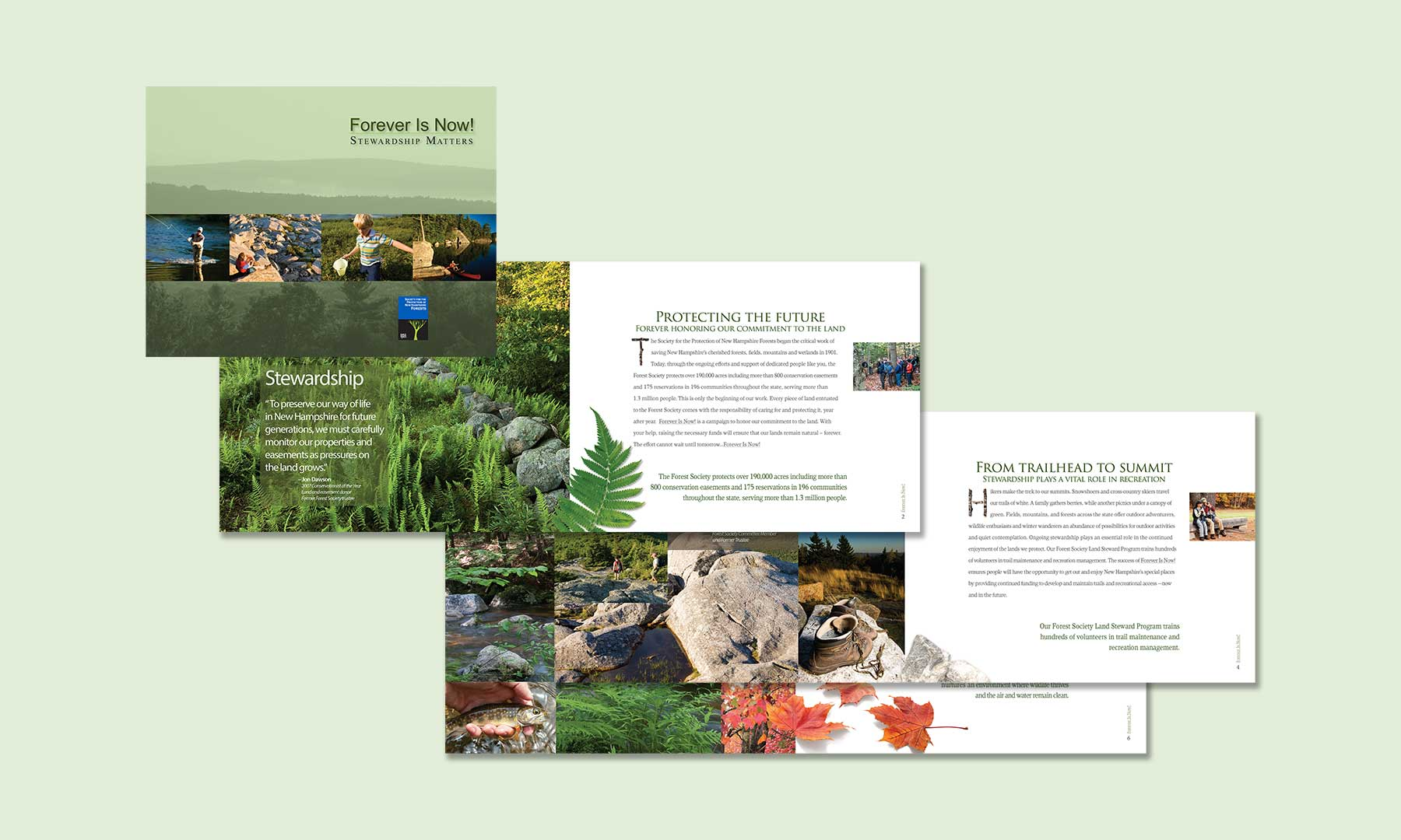 Grinley Creative completes Forest Society brochure