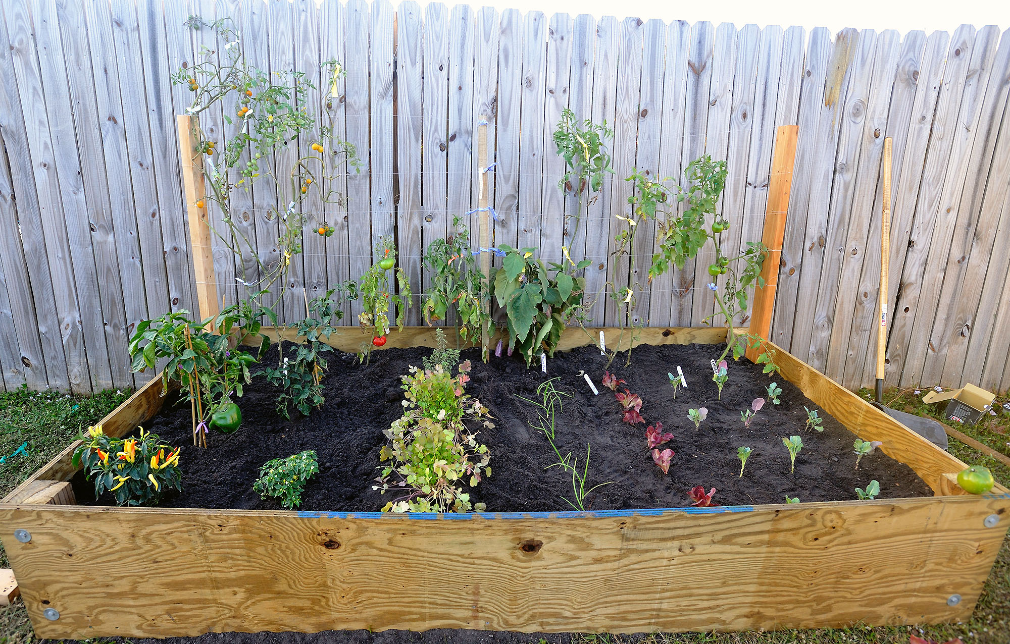 Learning from your Mistakes: A Gardening Story