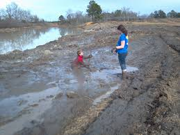Thumbnail for the post titled: Get Down and Dirty; It's Good For You!