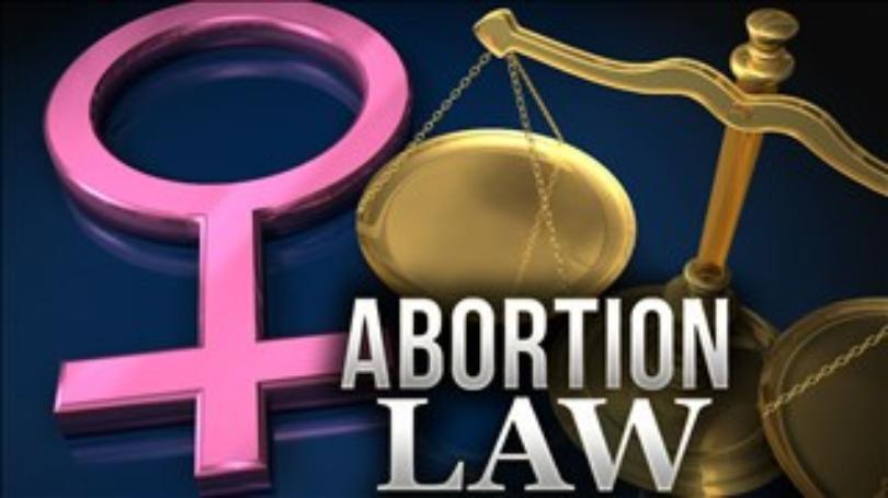 Thumbnail for the post titled: Michigan to Vote on Abortion Ban