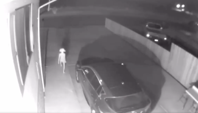 Security Camera Footage of 'Odd Creature' Goes Viral