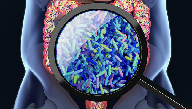 How Our Microbiome Affects Overall Health