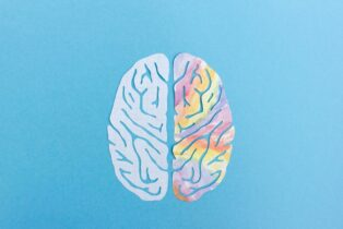 Can Humans Function with Only Half a Brain?