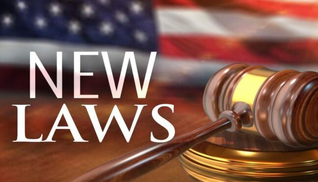 NEW LAWS: What's in Store for 2020?