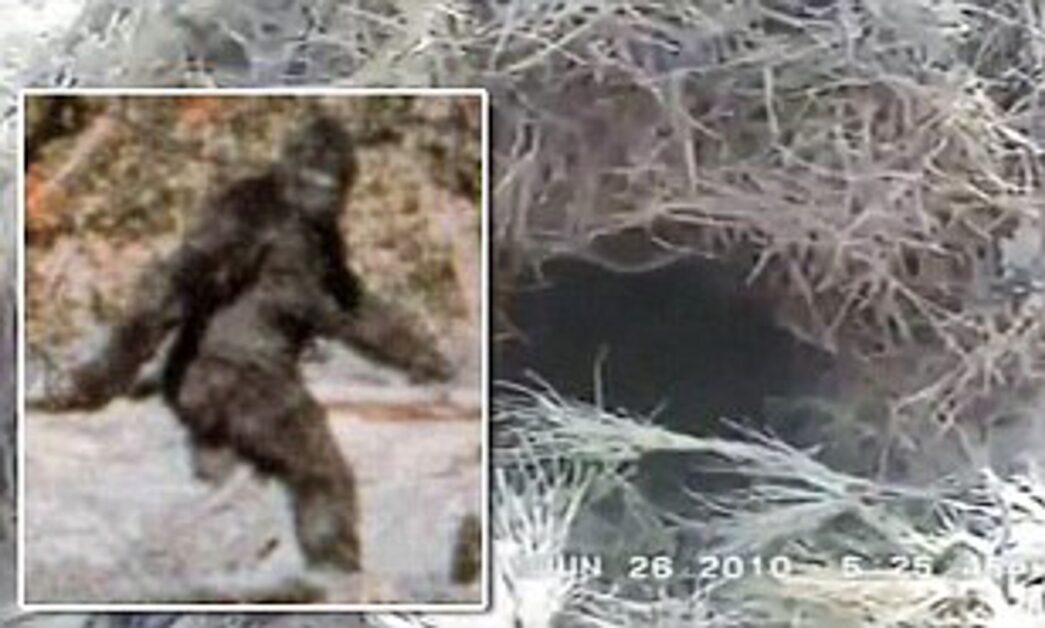 Thumbnail for the post titled: Oil Worker Captures Video of Bigfoot!