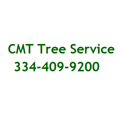 CMT Tree Service