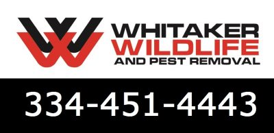 Whitaker Pest & Animal Removal Services Montgomery