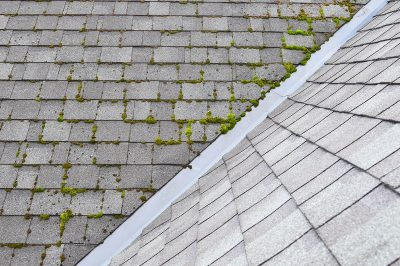 Roof Cleaning Montgomery, AL | Roof Washing Montgomery, AL